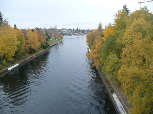 The Montlake cut looking West.